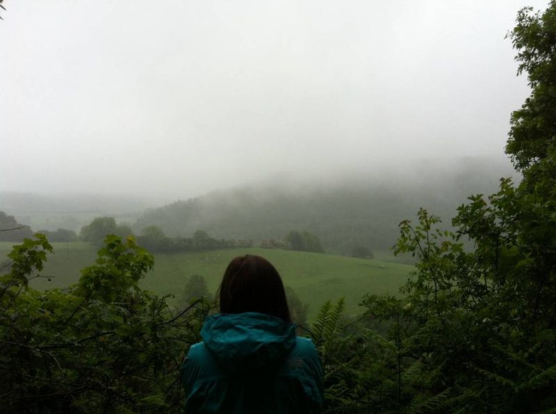 Amy's View of Brechfa Forest, Wales