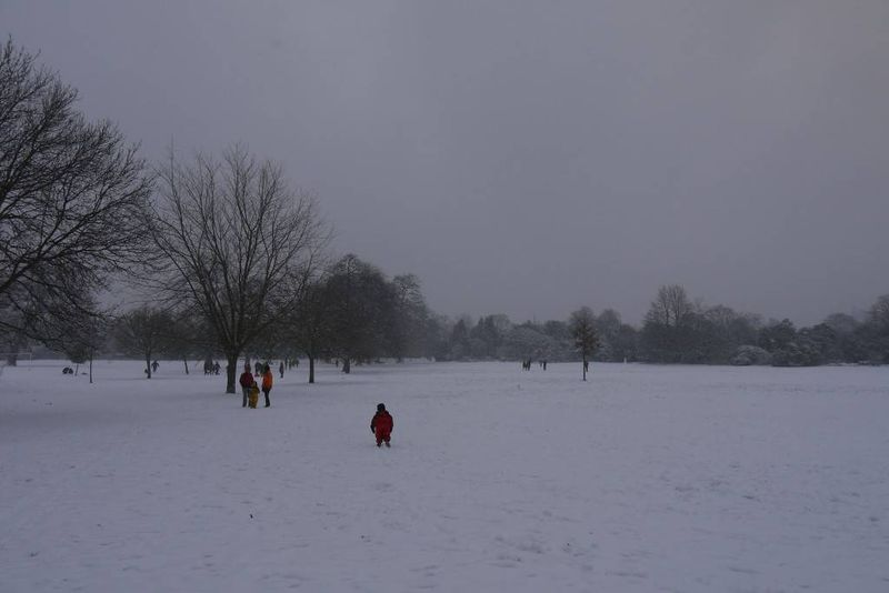Children Playing in Snowy Dulwich Park