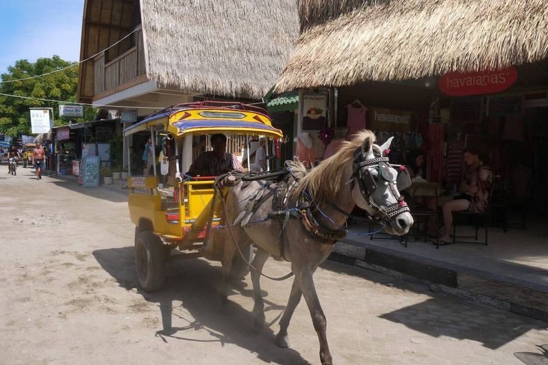 Horse and Cart on Gili Trawangan, Indonesia