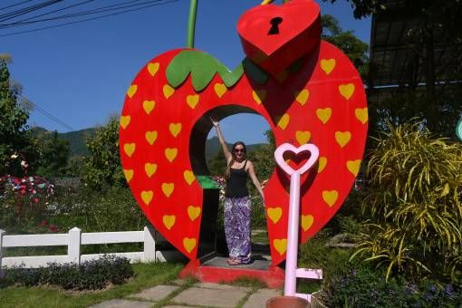 Love Strawberry Pai Statue, Thailand