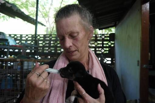 Maggie Hand-Feeding a Puppy at the Dog Rescue Project