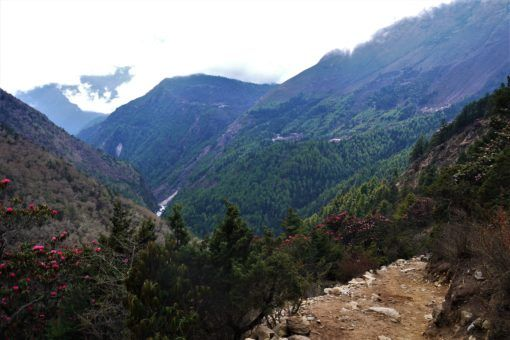Looking back down the colourful valley from Tengboche