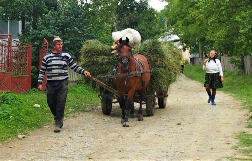 Local transport in rural Romania
