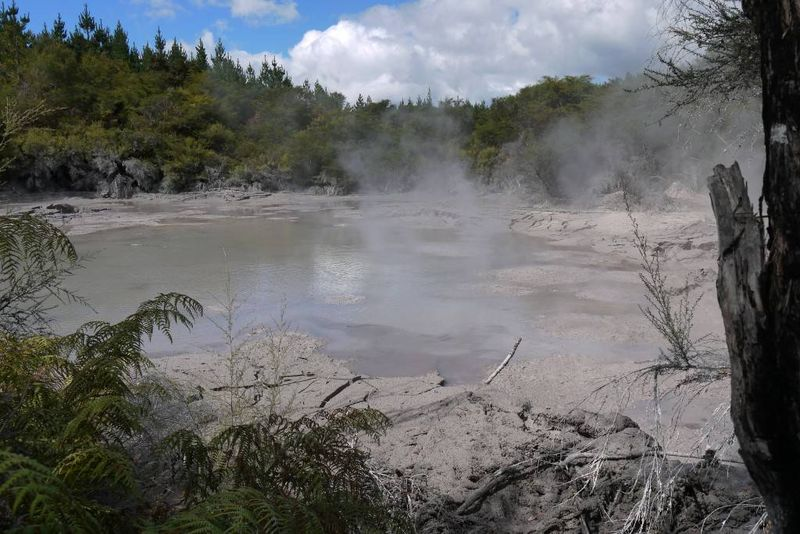 Mud Pools, Wai-O-Tapu, New Zealand