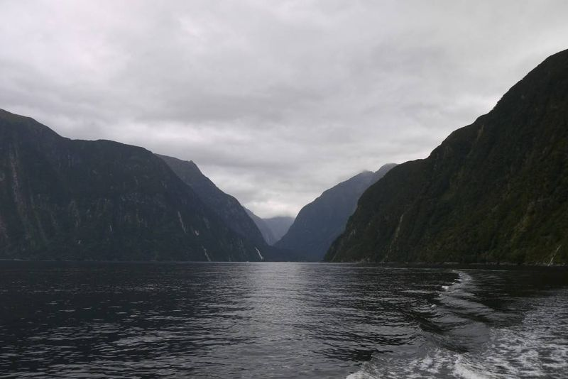 Milford Sound Boat Trip New Zealand