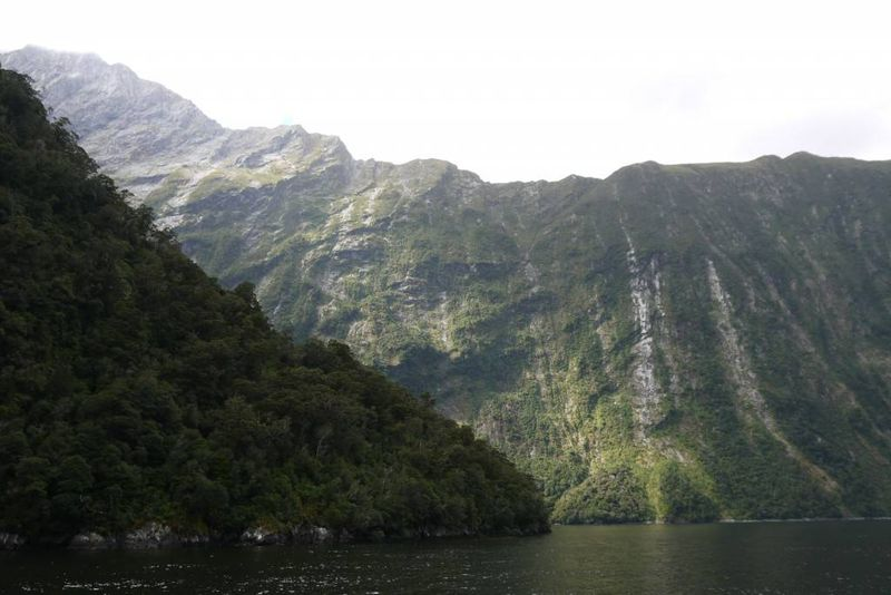 Hundreds of metres of Milford Sound