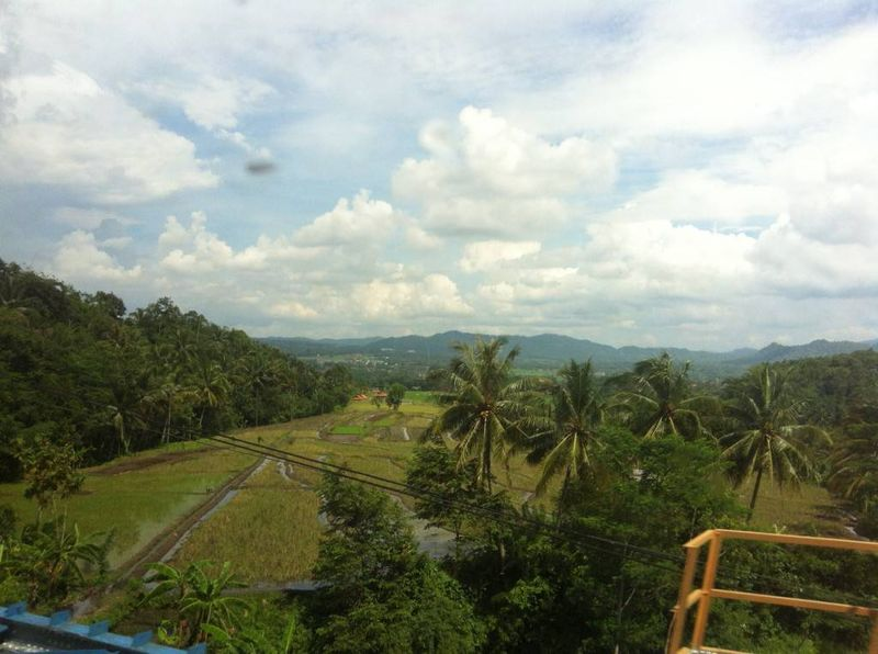 View of Java from the Train Window