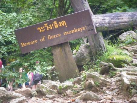 Beware of the Monkey Sign at Erawan National Park