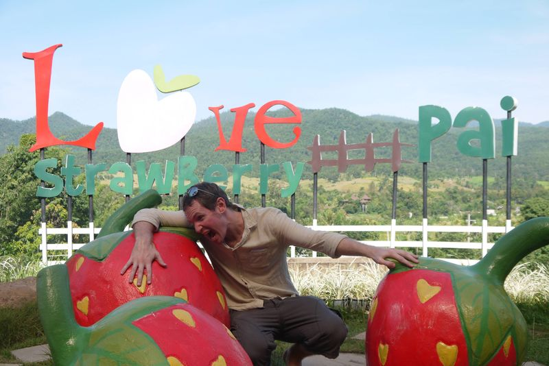 Love Strawberry Pai, Thailand