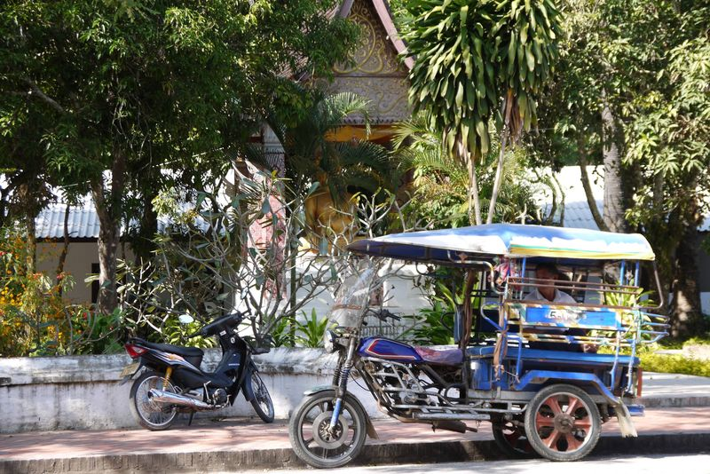 Tuk Tuk Driver in Laos