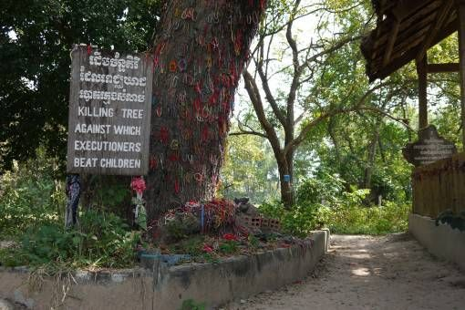 The Killing Tree, Cambodia