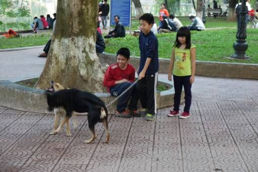 Children Walking a Dog by Hoan Kiem Lake in Hanoi