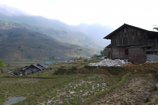 A house and rice fields in Sapa