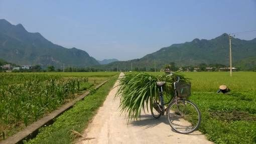 Bicycle in Mai Chau Valley