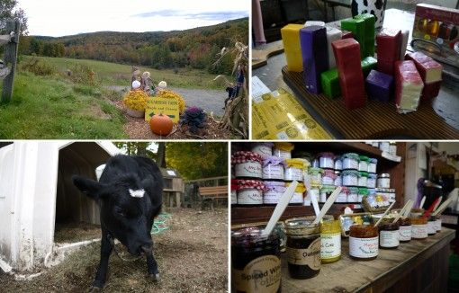 Sugarbush Farm Vermont