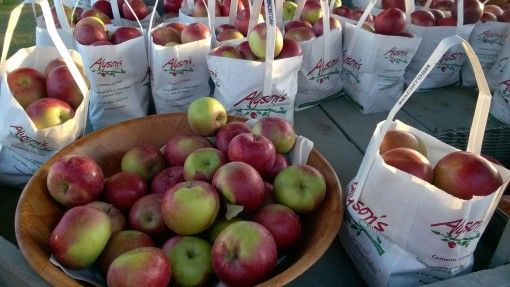 A few half pecks of MacIntosh apples