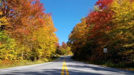 Vermont road and fall foliage