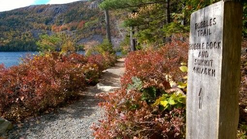 Don't miss the signs at Acadia National Park