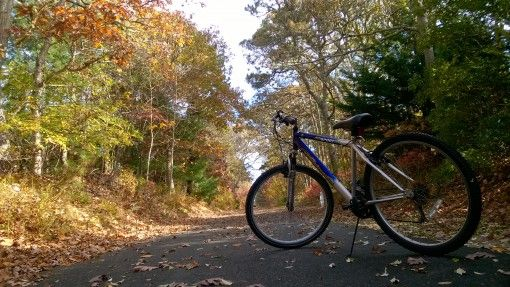 Bicycle on the Cape Cod Bike Trail
