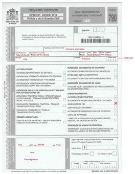 Modelo 790 form English translation