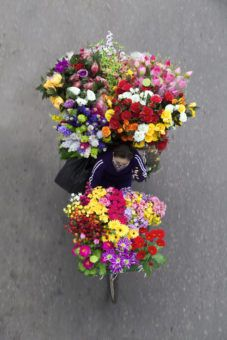 A Hanoi Street Vendor on a bike full of flowers