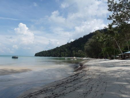 Monkey Beach in Penang National Park