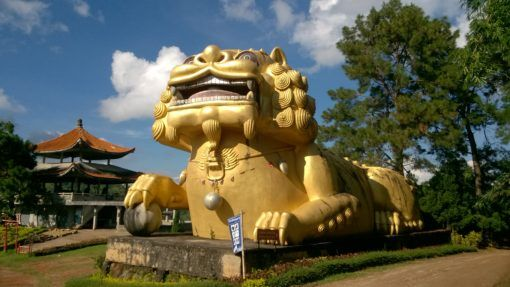 Giant gold lion at Wang Put Tan Tea Plantation in Thailand