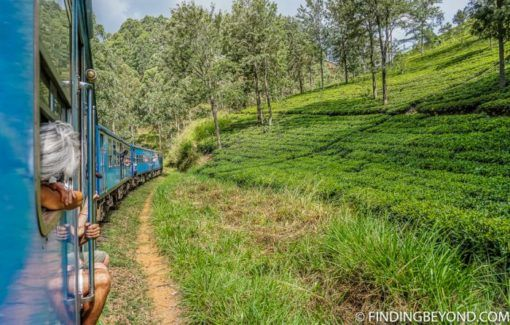 10 reasons to visit sri lanka train findingbeyond.com