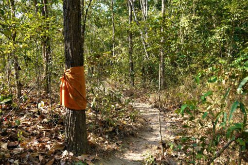 Hiking the Monk's Trail, Chiang Mai
