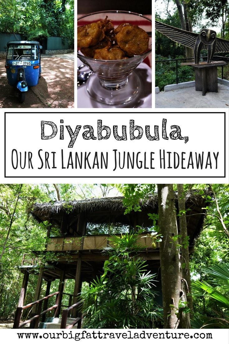 Diyabubula, Our Sri Lankan Jungle Hideaway Pinterest