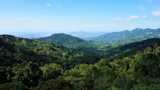 The view over the Sierra Nevada de Santa Marta from Casa Elemento