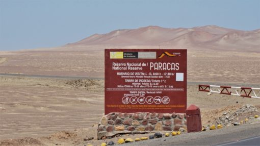 Paracas National Reserve Tour, Peru