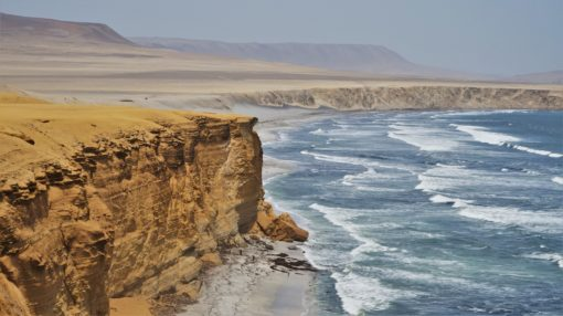 Paracas National Reserve Coastline, Peru