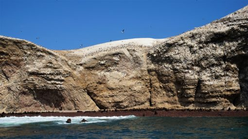Maternity Beach on the Ballestas Islands, Peru