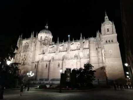 The cathedral in Salamanca, Spain
