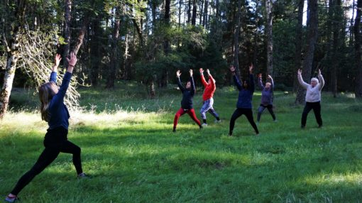 Yoga in the woods in Scotland