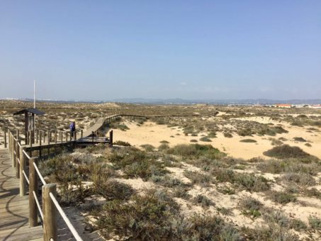 Rugged beach on one of the islands in the Ria Formosa Natural Park