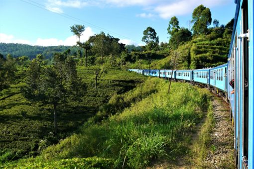 The beautiful train journey from Kandy to Ella